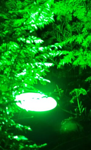 Gasontladings lamp vervangen door PAR 38 led green led light odf led groningen winschoten led