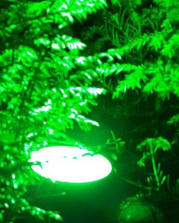 Gasontladings lamp vervangen door PAR 38 led green led light odf led groningen winschoten led