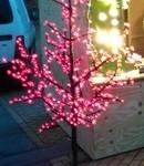 Led boom huren. Huur een led boom tijdens evenementen, beurzen, festivals, bruiloften, partijen