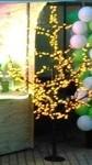 Led boom, Geel voor feesten, partijen, evenementen, beurzen