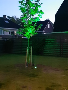 Groene LED Verlichting Green LED Lighting color ODF LED Lighting green light